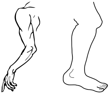 Arm and a Leg —Idiom Meaning and Origin | Know Your Phrase