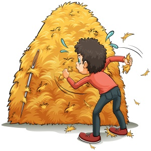 A boy looking for a needle in a haystack.