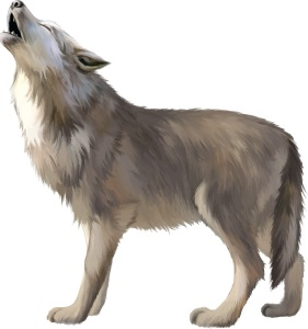 Cry wolf, an animal howling.