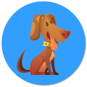 A list of animal sayings, cute dog icon