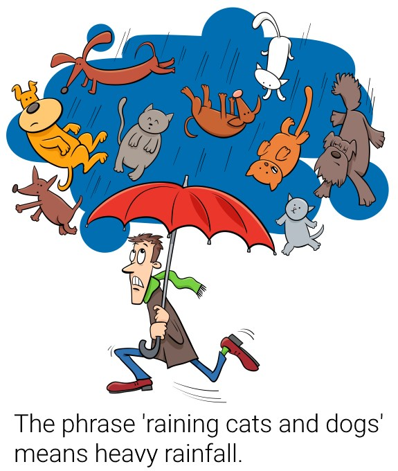 It is raining cats and dogs.