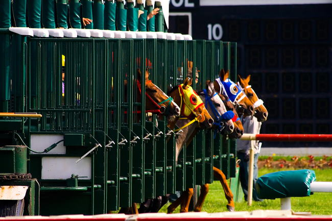 Horses races - right out of the gate.